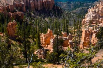 Bryce Canyon, National Park – USA