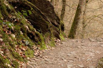 Moselle, Hike to Burg Eltz – Germany