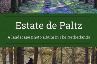 Soesterberg, Estate de Paltz – The Netherlands