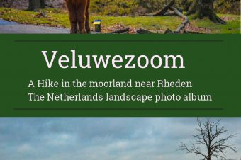 Veluwezoom, Hiking in the moorland – The Netherlands