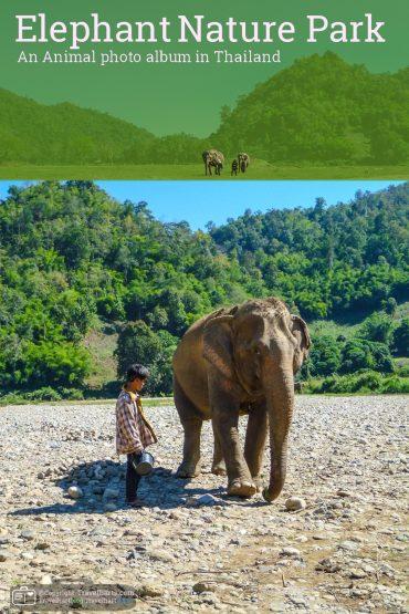 Elephant Nature Park – Thailand